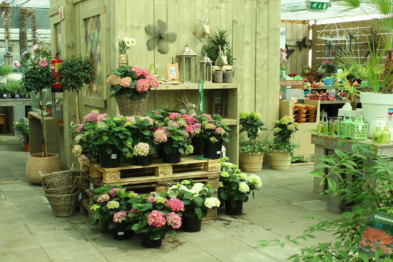 2017-05-09 bloemen 038